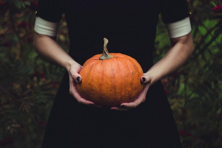 The+Haunting+History+of+Halloween